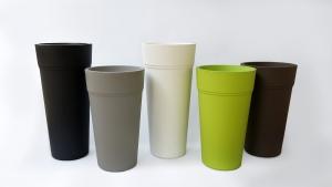 Vaza Stem